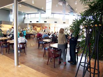 高齢者と地域の人が交流できる空間「ケアド・コモン」の提案(オランダの例)